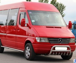Кенгурятник Mercedes-Benz Sprinter [2000-2006] WT008