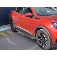 Молдинг дверной (4 шт, нерж) для Peugeot 2008 2019+