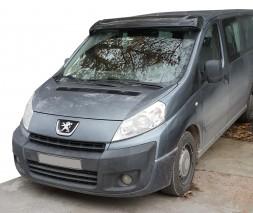 Peugeot Expert 2007-2017 гг. Козырек на лобовое стекло (черный глянец, 5мм)