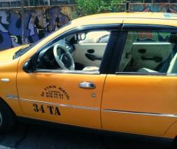 Молдинг дверной (нерж.) Fiat Albea 2002